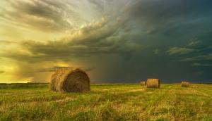The rolling prairies of Manitoba